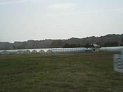 2010-05-04_11-59