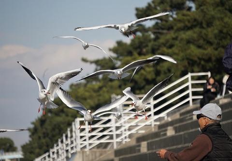 上野①いただきます(浜寺公園)