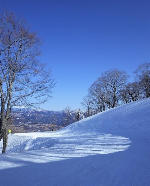 上野⑥去り行く冬(高鷲スノーパーク)