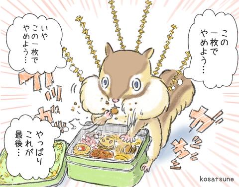 リス(クッキー缶) - コピー