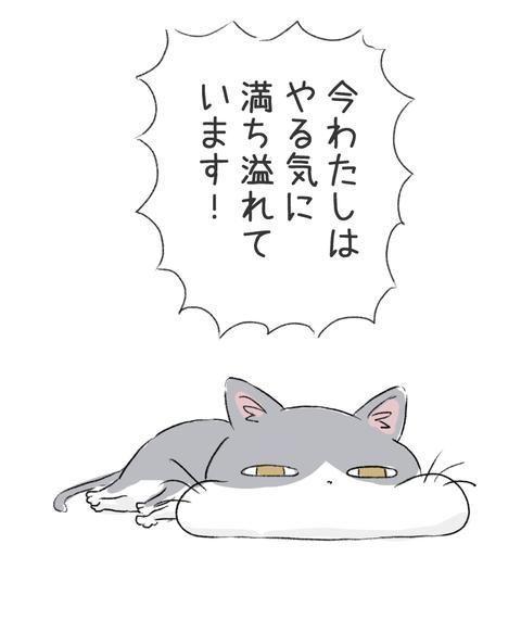 口だけはやる気ある猫2