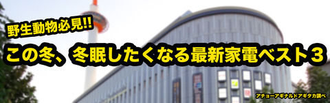 Kyoto_Yodobashi_Bldg_20101106-001のコピー