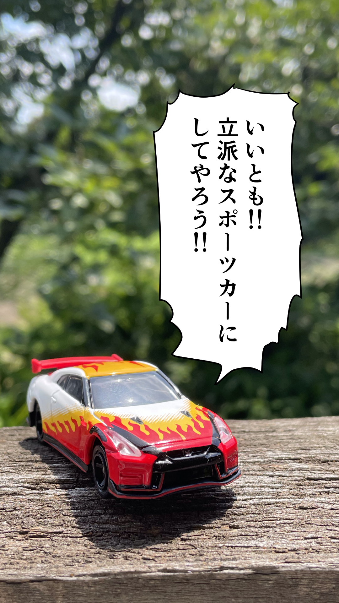 IMG_6729