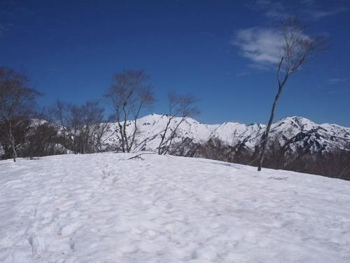 P5050045