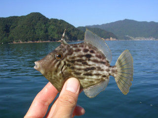 1410fishing31