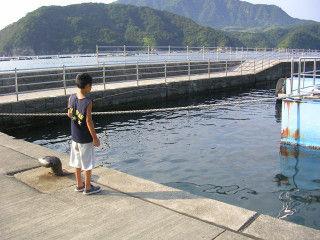 1208fishing01
