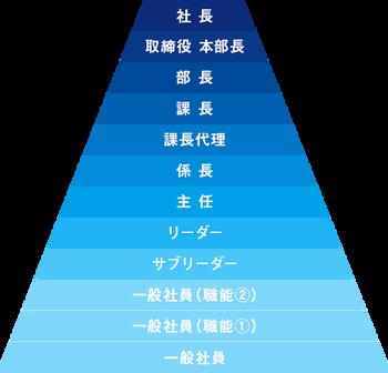 役職ピラミッド