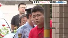 """電車で""""わいせつ"""" 女性追いかけトイレへ侵入、25歳男逮捕"""
