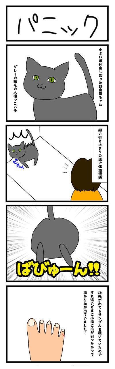 IMG_7777