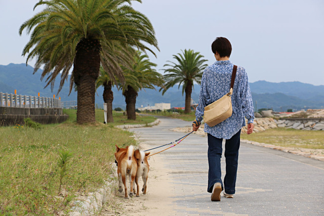 海岸散歩♪