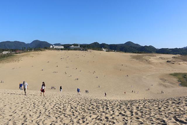 見渡す限り砂