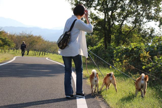 重信川遊歩道