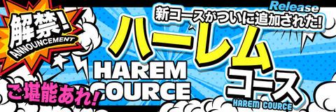 コース11種類_【解禁版】_ハーレムコース_968-323