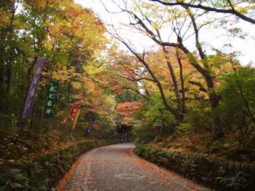 赤山禅院参道の紅葉