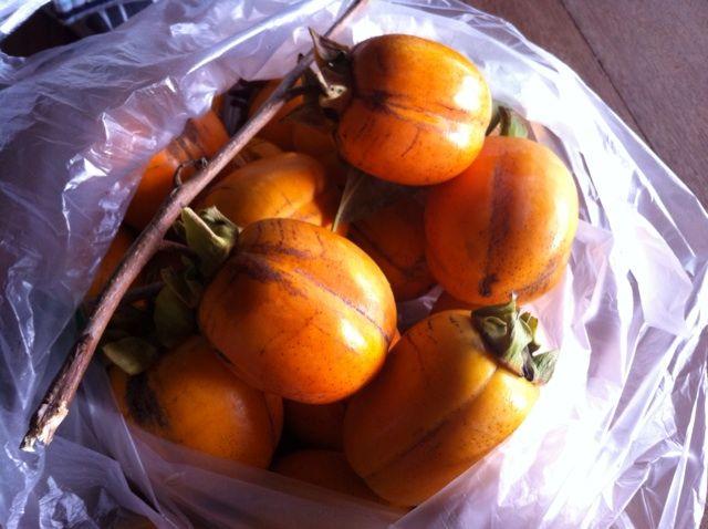 ほのぼの田舎暮らし 〜干し柿の作り方〜