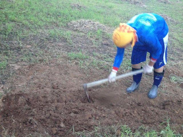「奇跡のリンゴ」の木村秋則から学んだ、土作りから畑を作る!