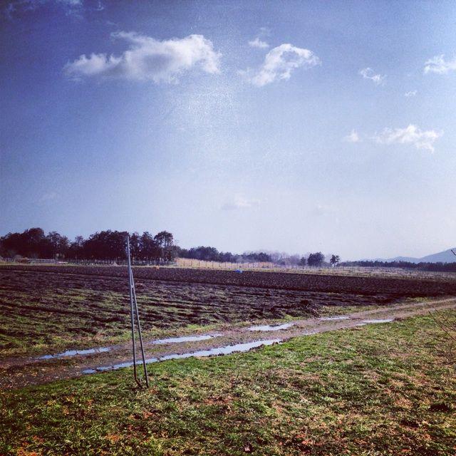 愛農かまどを見に、滋賀県へ行ってきました!!