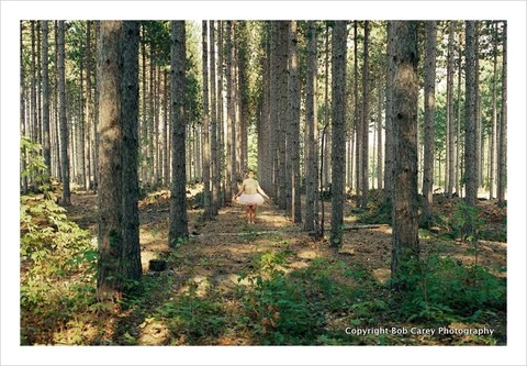 trees_the-tutu-project