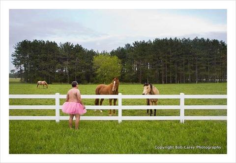 horses_the-tutu-project