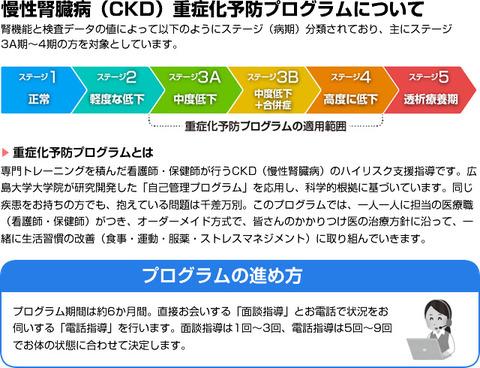 糖尿病性腎臓病重症化予防プログラム