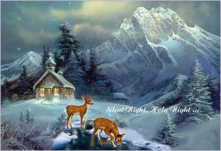 silent night -3