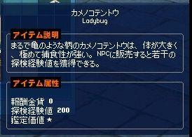 mabinogi_2017_03_22_028