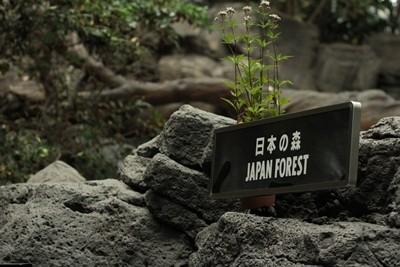 kaiyukan_20111022__5355