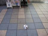 京橋駅のさいの目