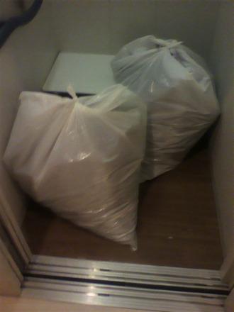 P1007602剪定枝ゴミを運び降ろす