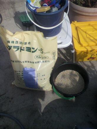 P1007808施肥を始めた