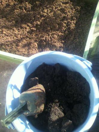 P1009302バーク堆肥