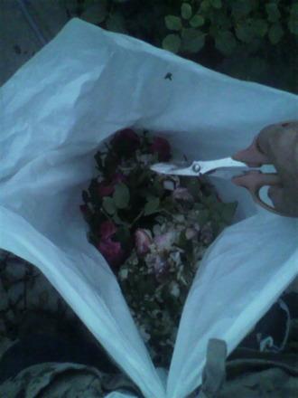 P1006973花柄処分2