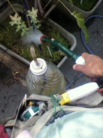 P1003180日曜の液肥散布