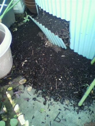 堆肥サイロ