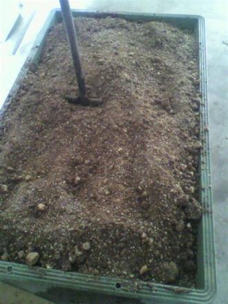 発酵肥料切り返し