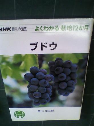 P1001703ブドウの栽培ガイド