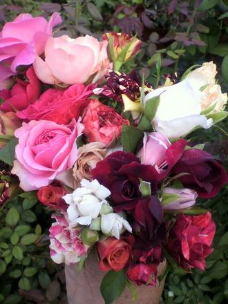 P1003200花摘み2