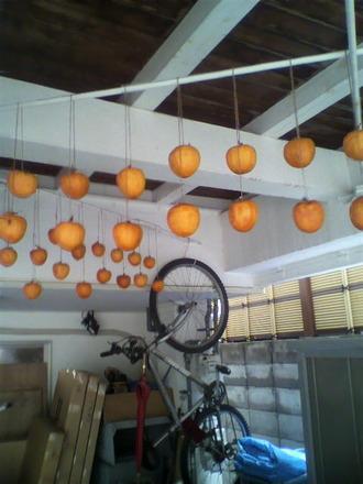 P1005379干し柿作り
