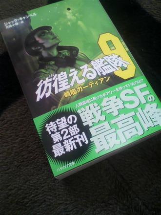 P1007642彷徨える艦隊9