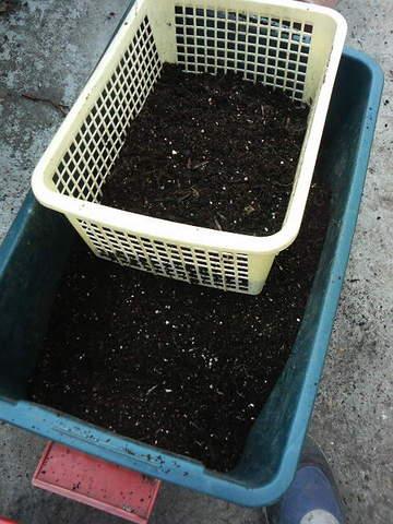 �土はふるいに掛けて回収