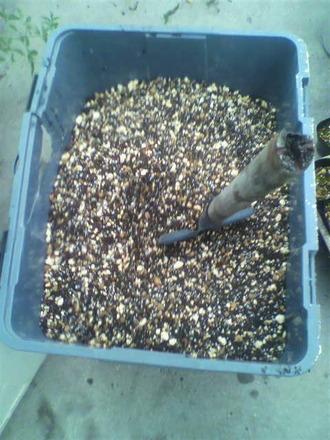 P1006771鉢植え用土を作る