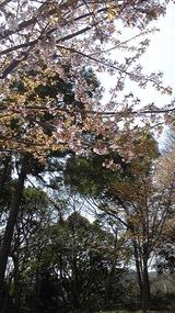 fb8da9fb.jpg