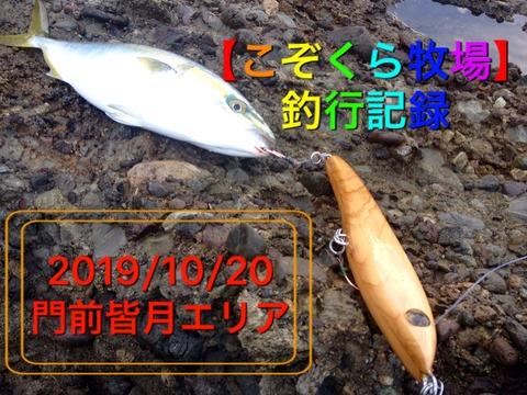【こぞくら牧場】釣行記録