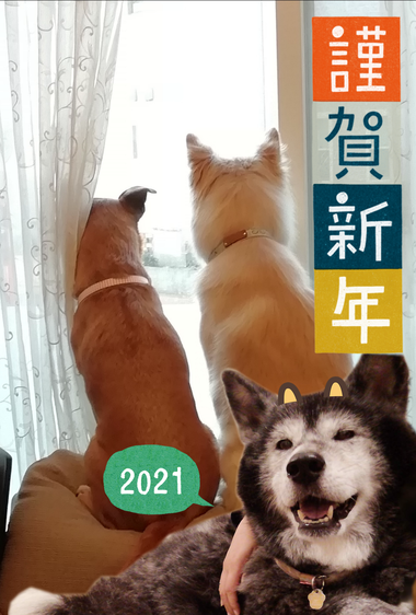 2021_3