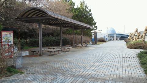 若洲海浜公園サイクリングコース26