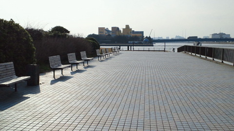 若洲海浜公園サイクリングコース43