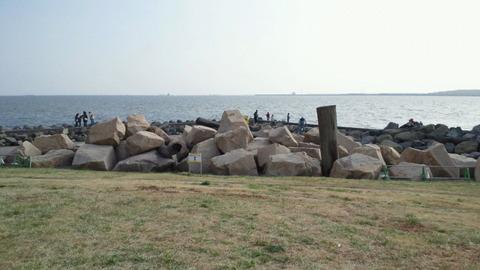 若洲海浜公園サイクリングコース51