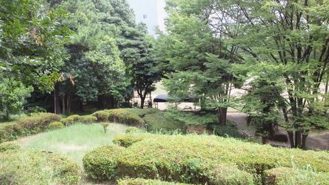 青海中央ふ頭公園7