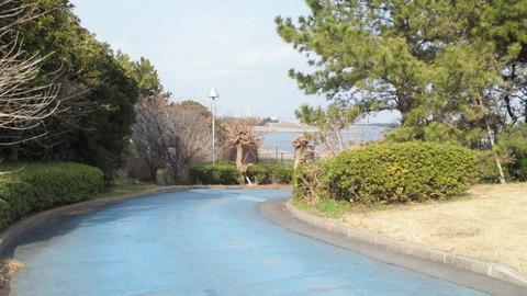若洲海浜公園サイクリングコース24