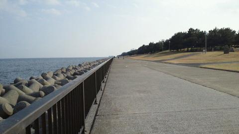 若洲海浜公園サイクリングコース44